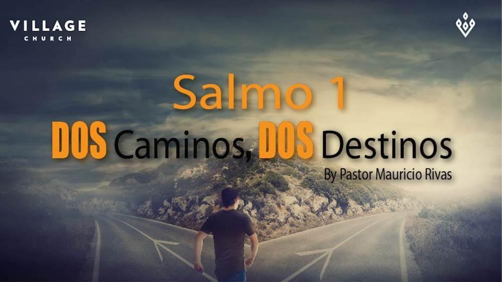 Dos Caminos-Dos Destinos. Salmo 1